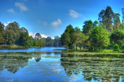 Kodaikanal Lake - Closer Look