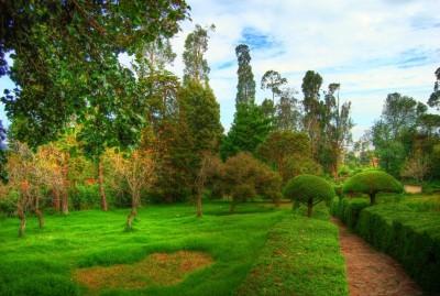 Another view - Kodaikanal Park